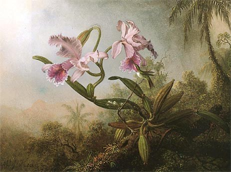Martin Johnson Heade Orchids and Hummingbird 1875